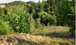 Boskovštejn - Měchounčný kopec (ZN)
